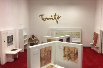 Tonitza Workshop